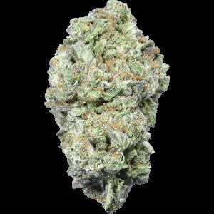 Death Bubba cannabis strain bud