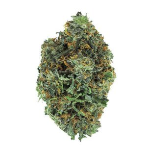 Grape Hindu Kush indica dominant strain