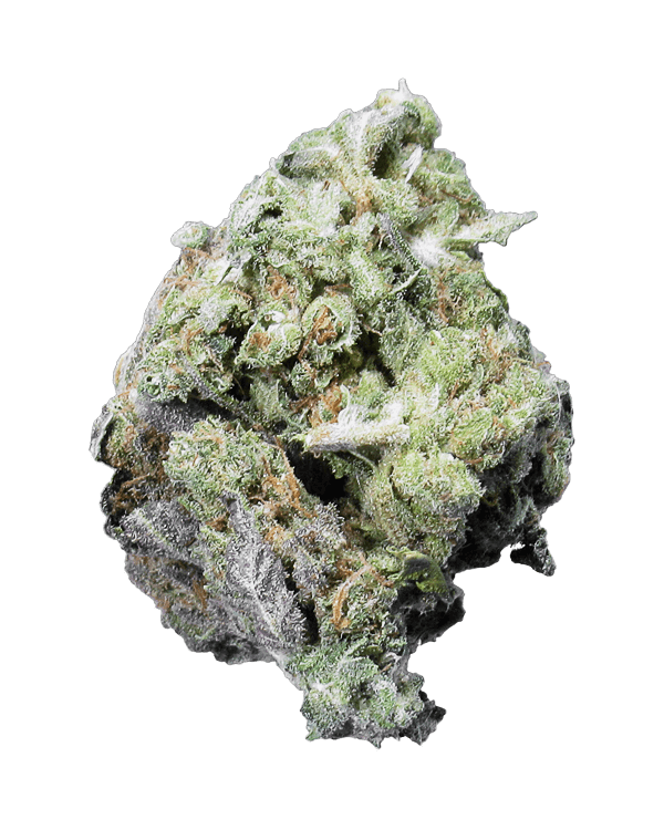 Blackberry Headband is an 65% indica dominant strain