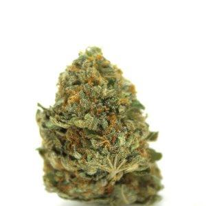 California Orange Cannabis Strain