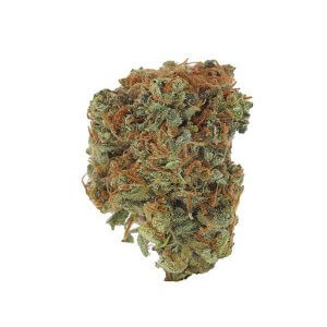 Blue Dream - Sativa dominant hybrid