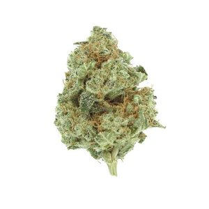 Super Lemon Haze sativa dominant strain