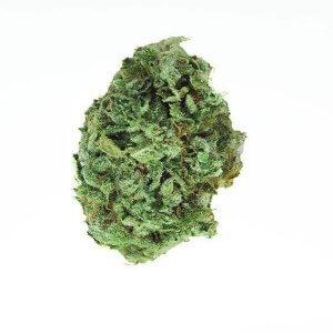 Gorilla Glue 4 - Hybrid Cannabis strain