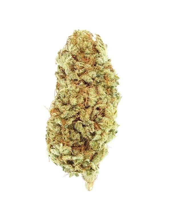 Jet Fuel Cannabis strain