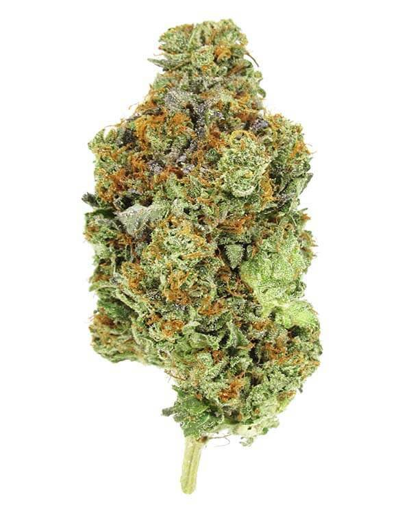Pink Rockstar indica cannabis strain