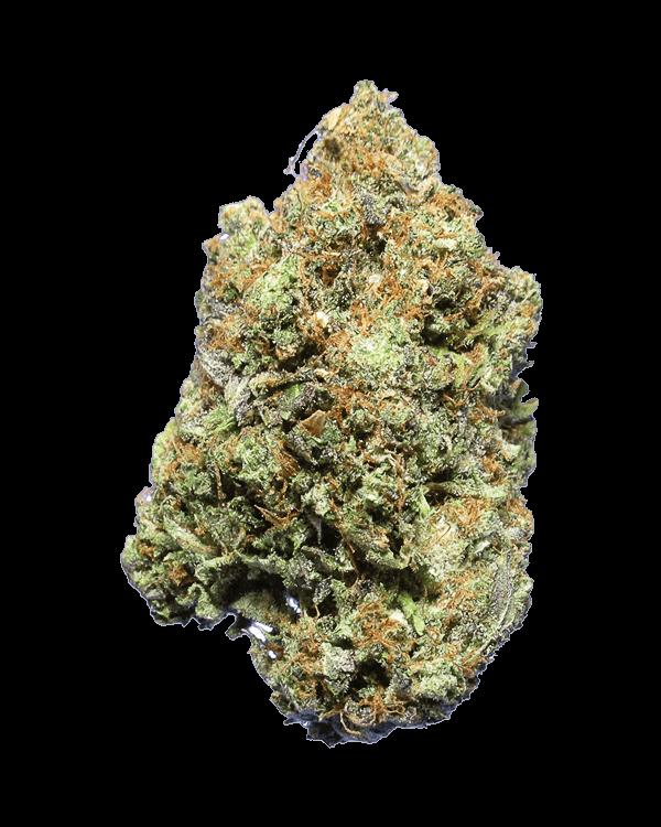 Cali Bubba Kush Indica strain