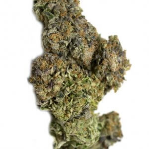 White Death Indica Dominant Strain