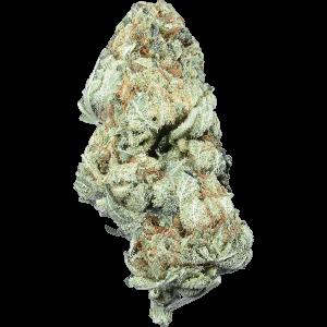 Violator OG Indica cannabis strain