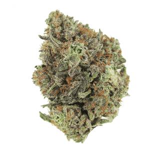 NYC Diesel Cannabis Strain
