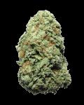Orange Sherbert hybrid cannabis strain
