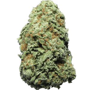 Orange Sherbert hybrid cannabis strain