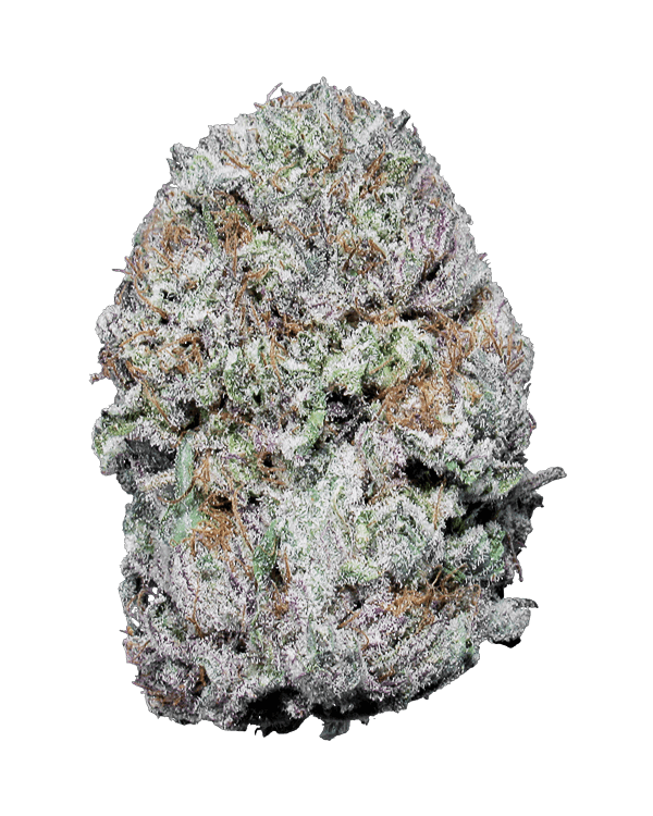 Grape Crush Indica dominant strain