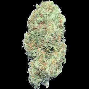Nebula hybrid cannabis strain