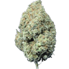 Moby Dick Cannabis strain