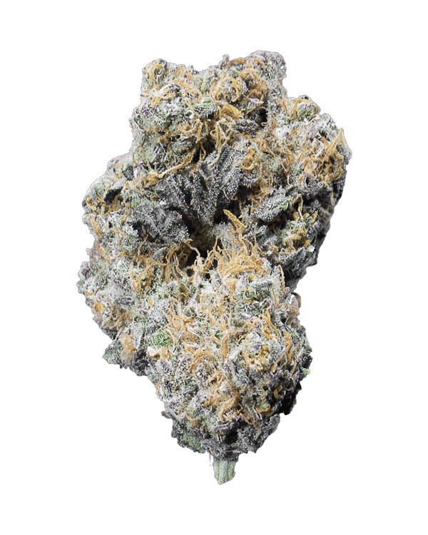 Peyote Cookies is a 95% Indica dominant strain