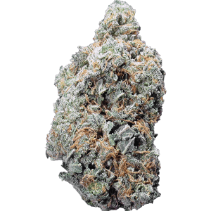 Skittlz is a 60% Sativa dominant cannabis strain.
