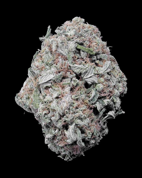 Gelato indica dominant hybrid cannabis strain