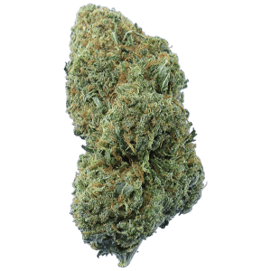 Original Haze cannabis bud