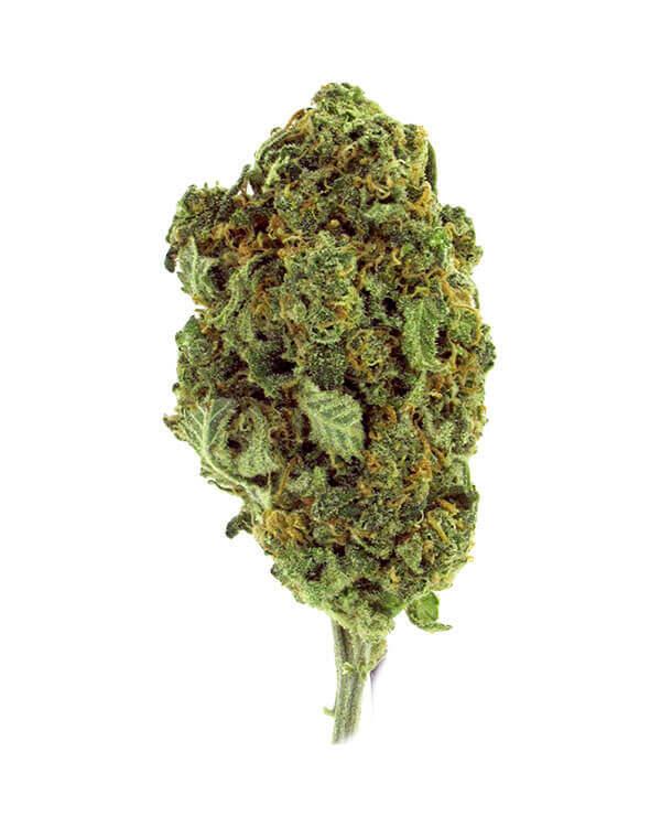 Strawberry Banana indica dominant cannabis strain