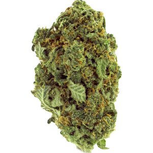 Strawberry Banana indica dominant cannabis strain
