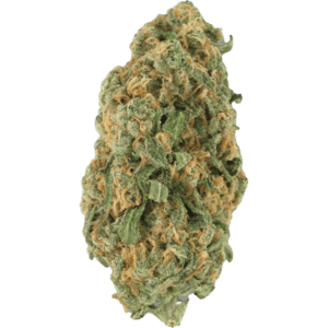 California Orange Hybrid Cannabis strain