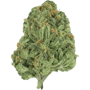 Ice Wreck Hybrid cannabis strain available online in Canada from MMJDirect