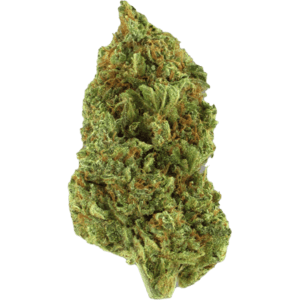 Lemon Berry sativa dominant strain