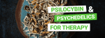 Psilocybin for Therapy
