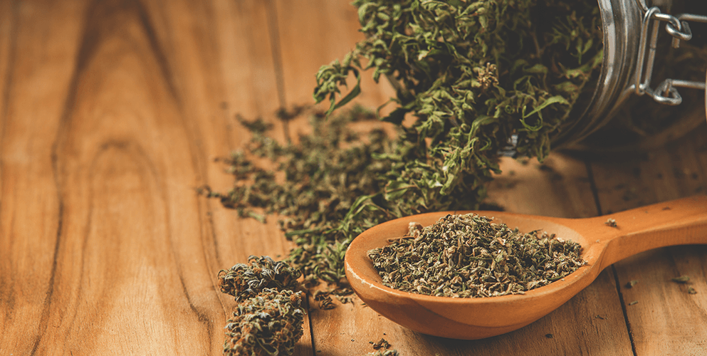 Cannabis for Nerve Damage