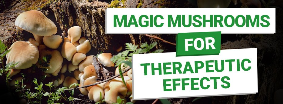 Magic Mushrooms for Therapeutic Effects