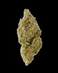 Citrix cannabis strain