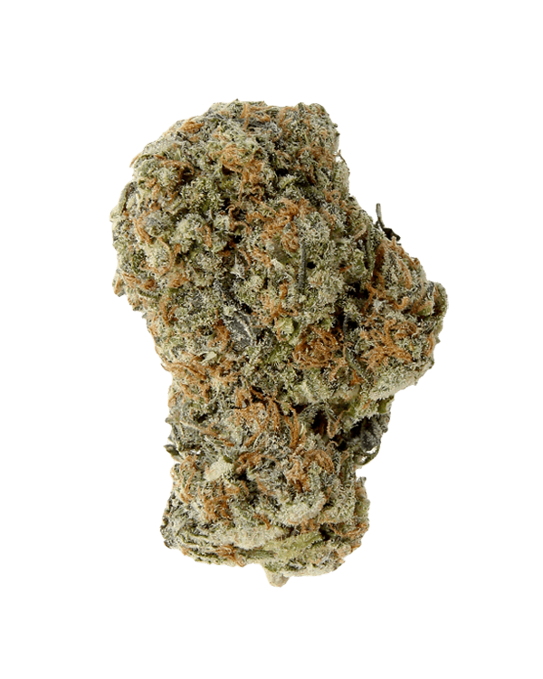 Platinum Blackberry Sativa dominant hybrid strain