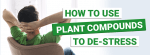 How to Use Plant Compounds to Destress