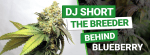Who is DJ Short