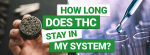 How Long Does THC Stay in My System