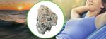 Top 10 Best Weed