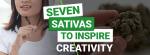 Best Sativas for Creativity