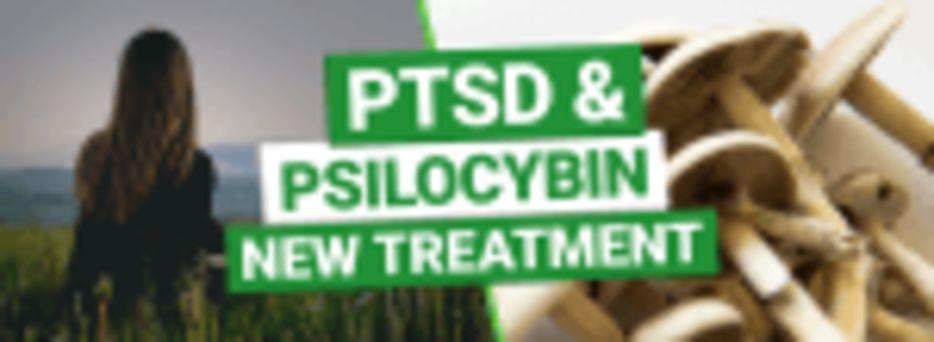 PTSD & Psilocybin