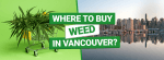 Buy Weed in Vancouver