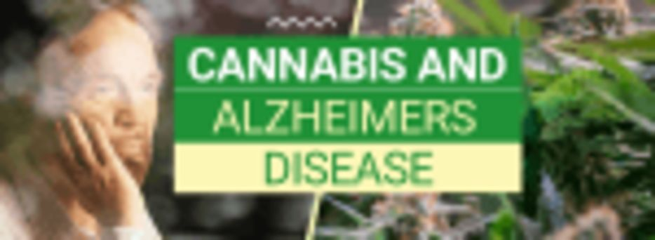 Alzheimer's and Weed