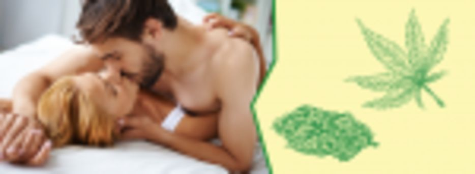 Best Weed Strains for Sex