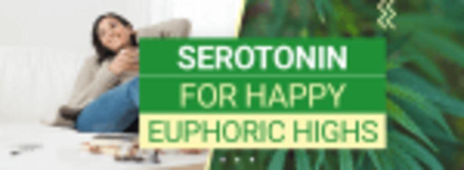 Cannabis and Serotonin