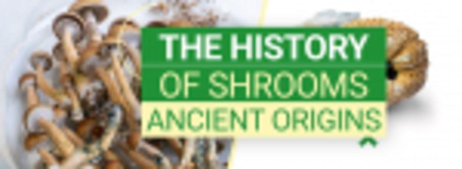 History of Mushrooms